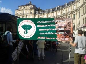 Alle 15 Minuten wird ein Elefant getötet  Foto: Margit Pabst